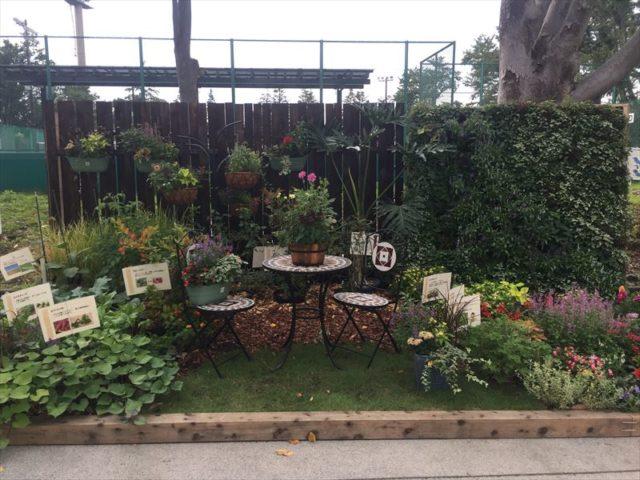 ザ・ガーデンと言う感じのお庭