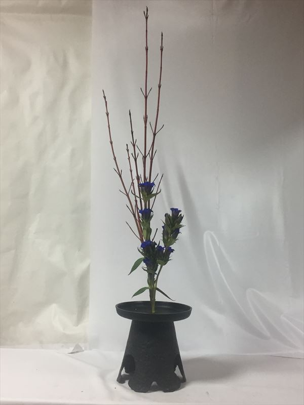 サンゴミズキと紫リンドウの生花