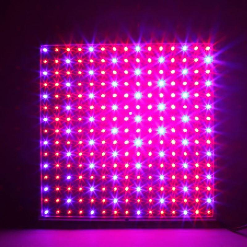 赤色の波長のライトを追加した育成ライト