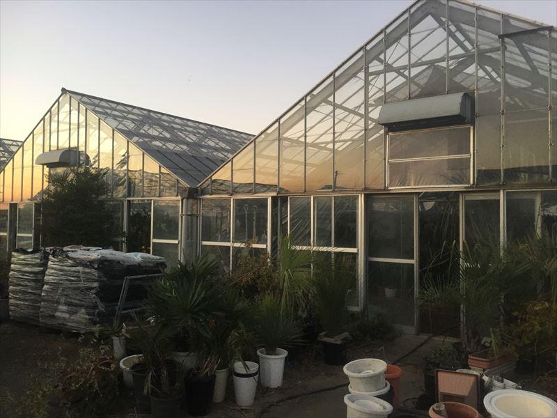 群馬県前橋市のサボテンと多肉植物の聖地『サボテン団地』
