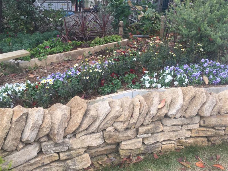 半永久的にポットが入りそうな多数ある大きな花壇