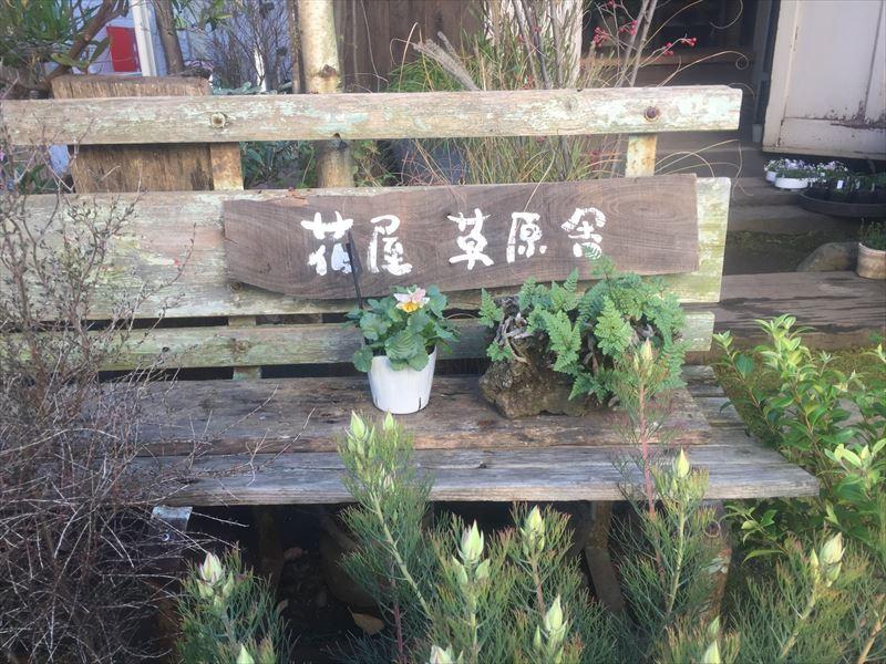 駅裏にひっそりと存在する異色の花屋さん