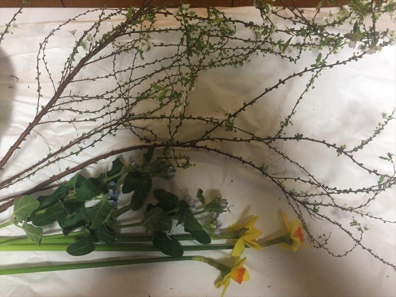 2018年はじめての池坊の花材