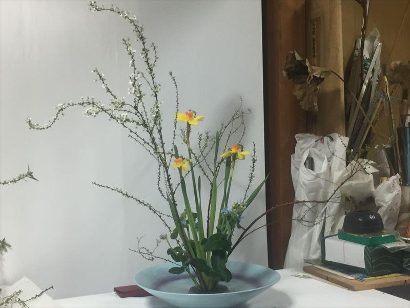 2月の研究会のための自由花