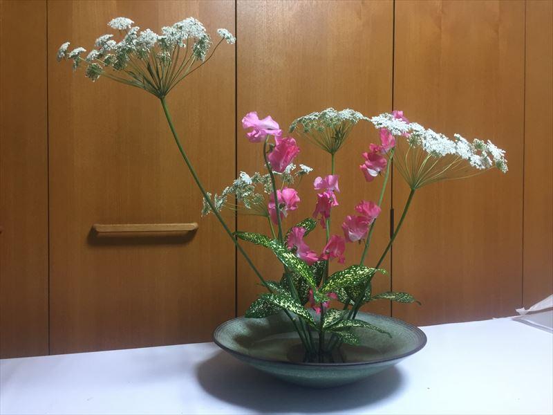 研究会のための自由花