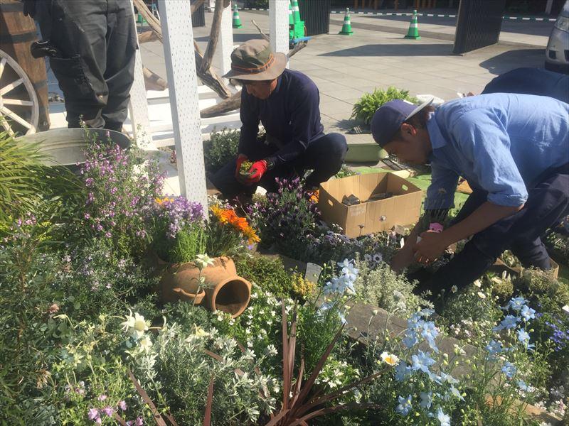 順調に植栽が進むコンテストガーデンの貝塚造園チーム