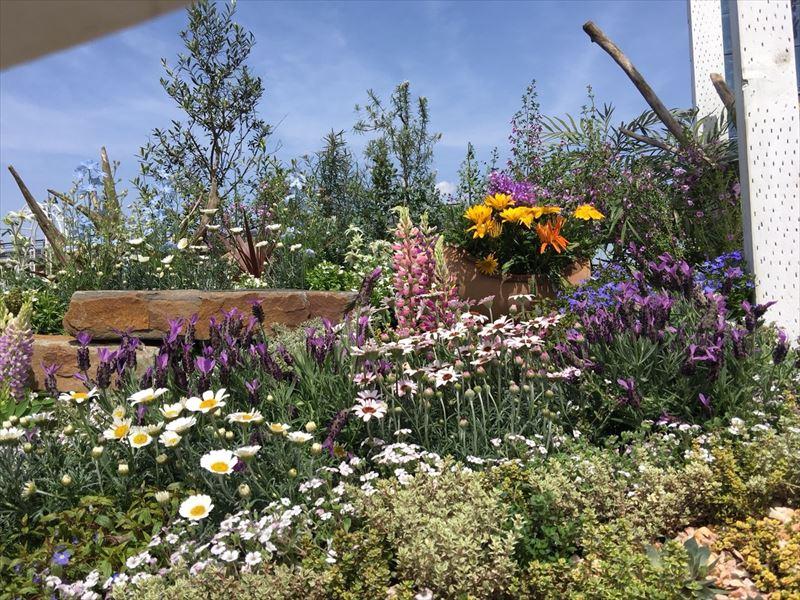 かなりのお花が植栽されたコンテストガーデンの花壇
