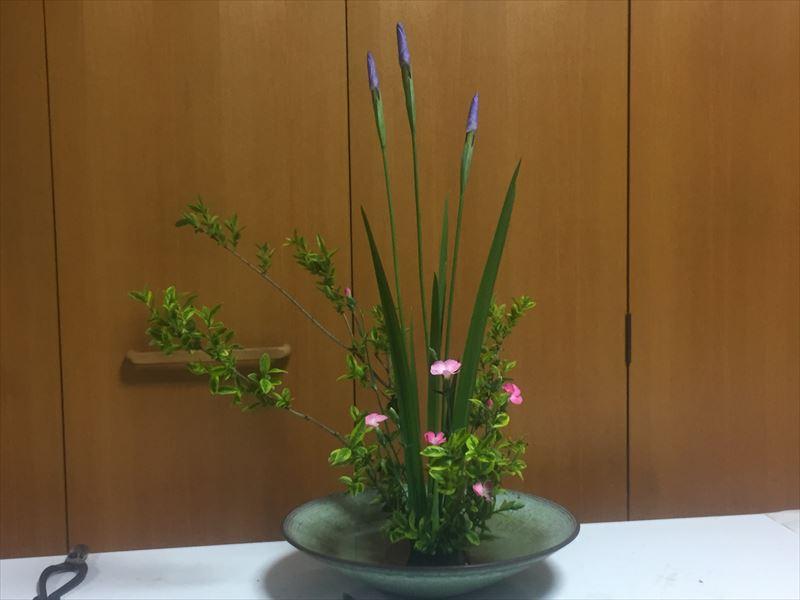 先生の直しが入った完璧な自由花