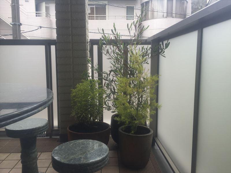 二階の客室リビングのベランダには癒やしの植栽を