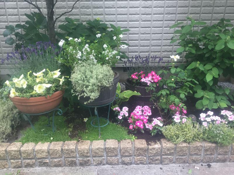 日が当たりにくい整理した花壇