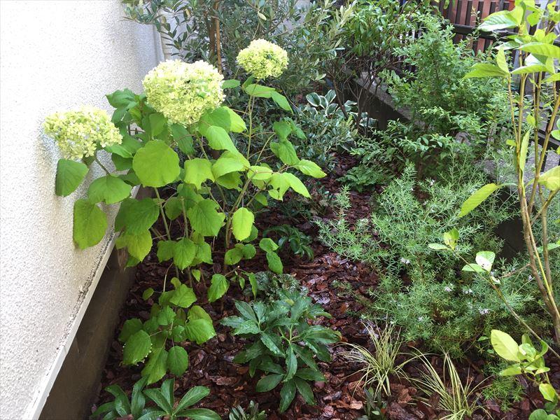 軒下の最小スペースを使ってお客さんが楽しむ箱庭のお庭づくり