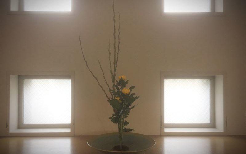 池坊の生花の基本であるアカメヤナギと菊の生花