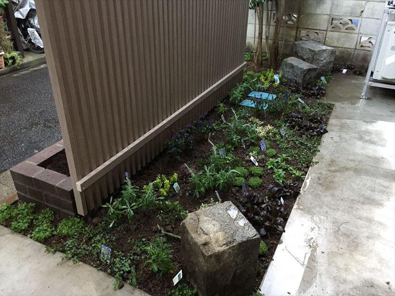 ベロニカ好きのフェンス裏の植栽工事