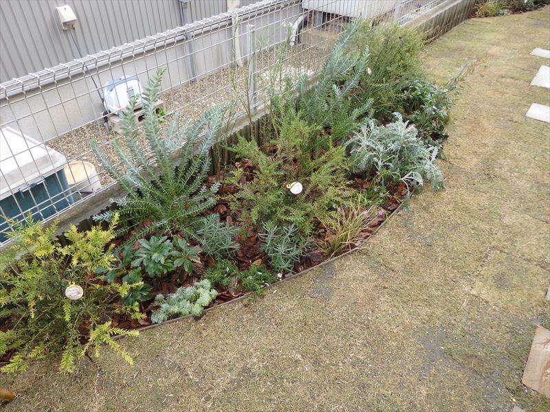 メンテナンスを最小限に抑えた新設植栽スペース