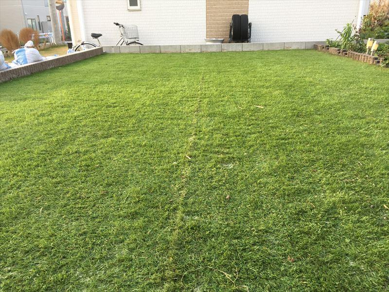 キッチリ施工された真っ平らな人工芝