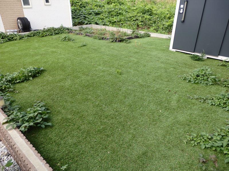 雑草が生えてくる施工不良の人工芝