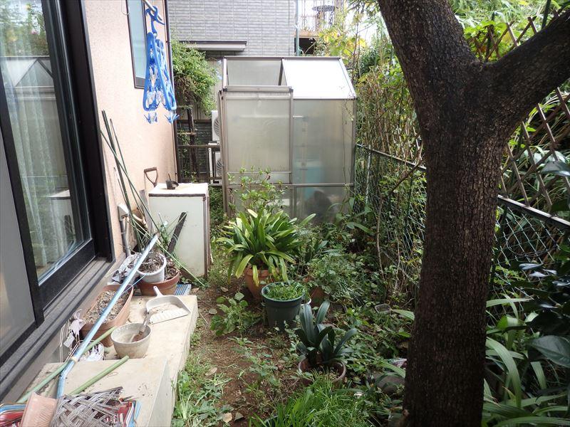 解体した使ってない温室があるかつての荒れた庭
