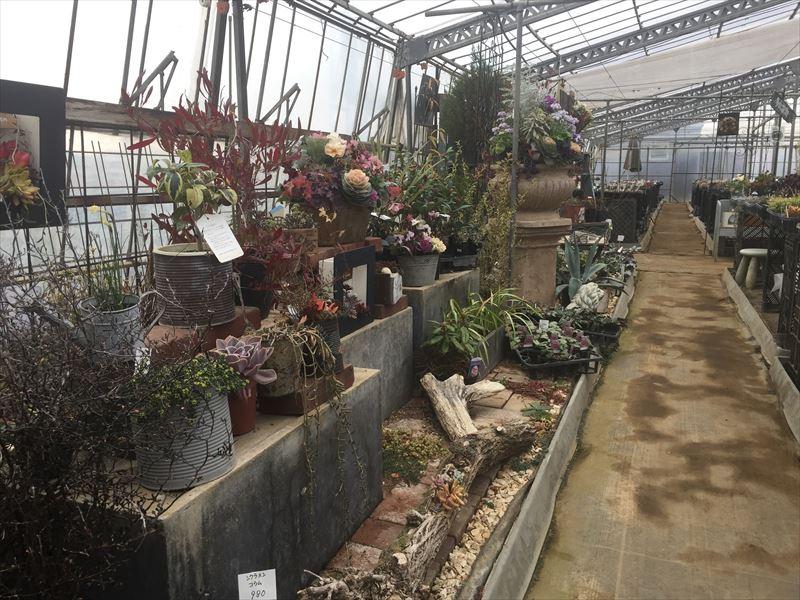 ハンギングや花壇のディスプレイの参考例