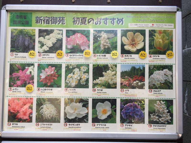 どこの庭園でも開示している季節のオススメの植物の看板