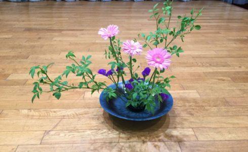 生け花の根源である池坊の東京支部研究会でいけた季節の花のガーベラとスターチス