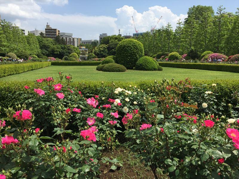 一番奥側にあるフランス式の整形式庭園にあるバラ花壇