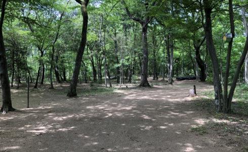 埼玉県所沢市の里山の天然ナチュラルガーデンで庭づくり