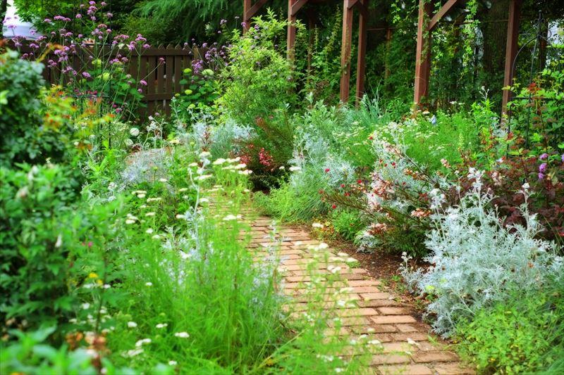 ナチュラルガーデンの庭づくりによくあるレンガの通路