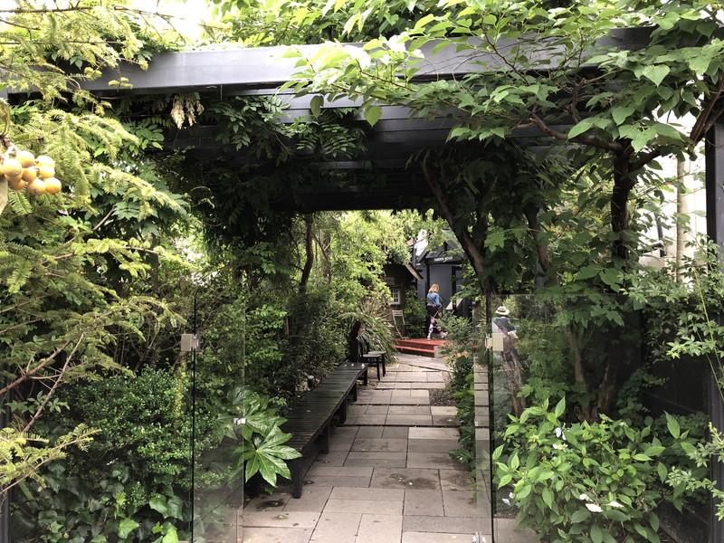 梅雨の時期で植物が一年で最も成長する鎌倉のカフェの入り口の緑