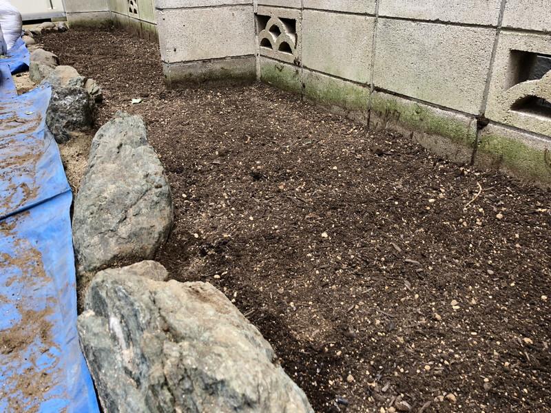 雑草のドクダミを完全に除去した花壇