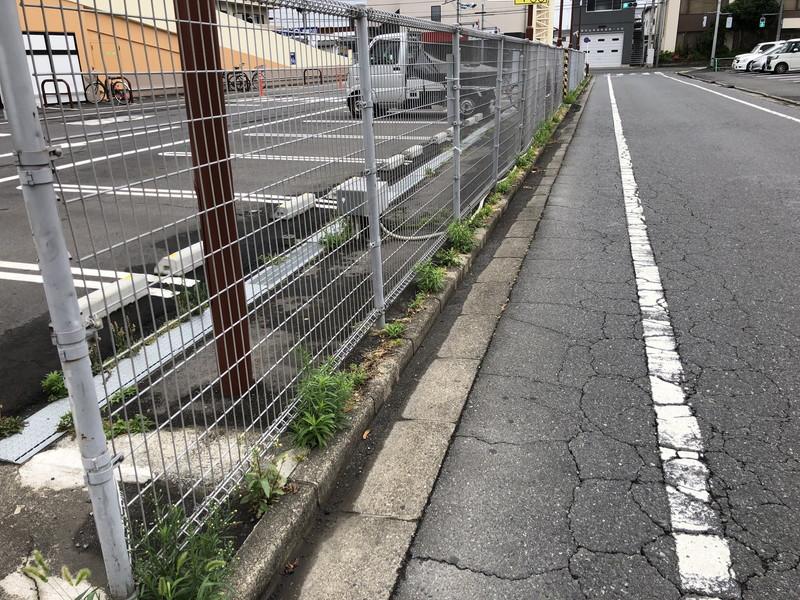 駐車場フェンスの下のコンクリートの隙間からはびこる雑草