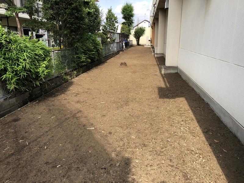 一年分ため込んだ雑草を刈った後の綺麗な状態の裏通路