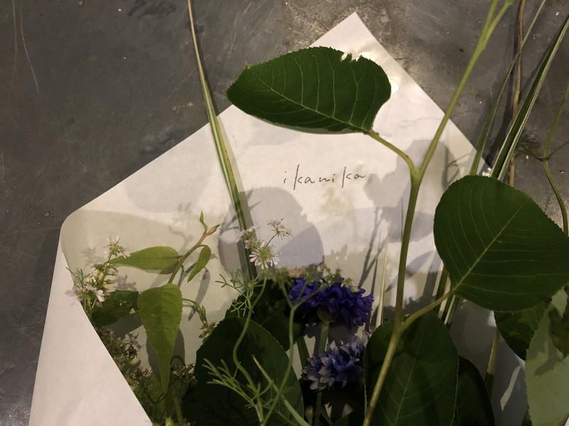 先生みずからikanikaの紙で包んでくれた花材