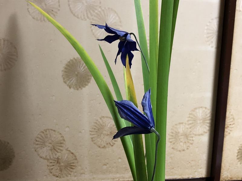 池坊の生花の三種生けのクレマチスの花の向き