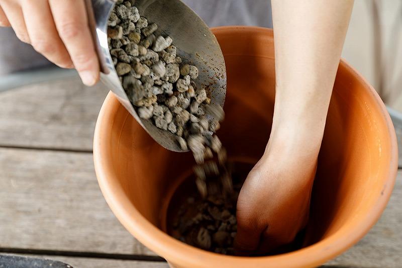 テラコッタの鉢植えに鉢底石を入れる