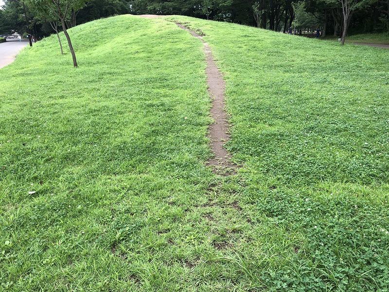 東京都小金井市にある小金井公園の小山の素敵な芝生の斜面