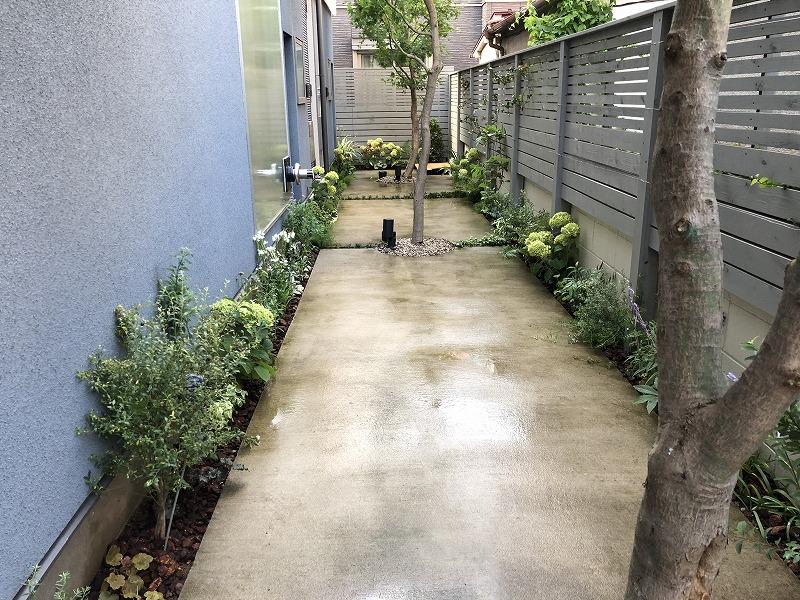植物でいっぱいに生まれ変わった世田谷区の個人邸植栽