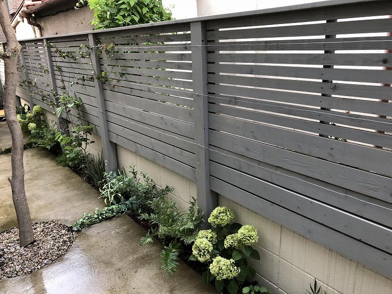 設置したデザイン性のあるフェンスと植物