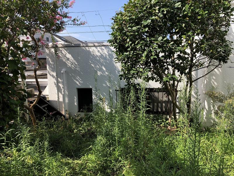草刈りを行う前の雑草だらけの個人邸の庭