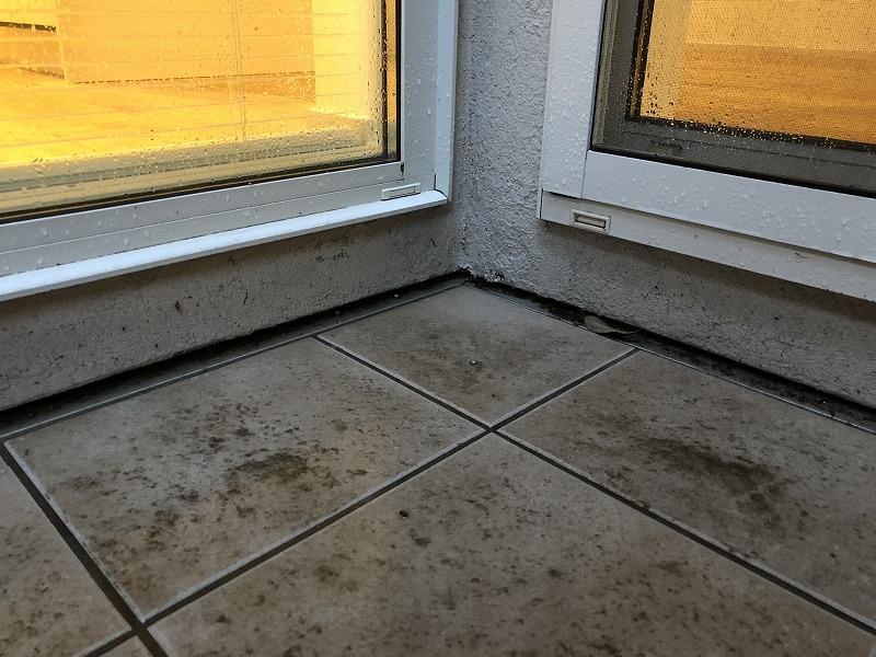 10センチの段差が外と中に分けられる家の床とタイルの中庭