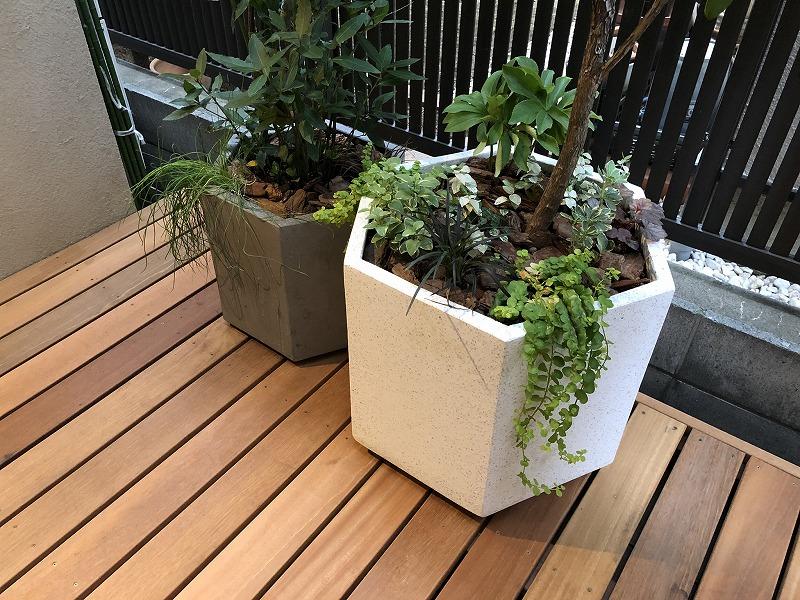 目隠しプランターに植栽された秋の植物たち