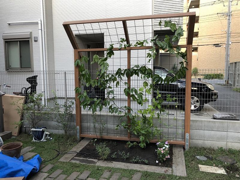 武蔵野市で施工したパッションフルーツを誘引するための誘引フェンス