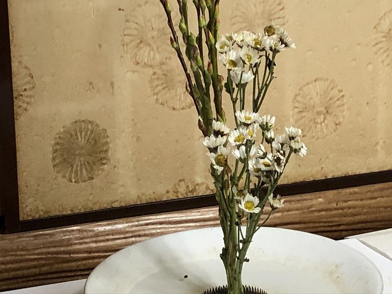 池坊2種生けの難しいとされる小菊