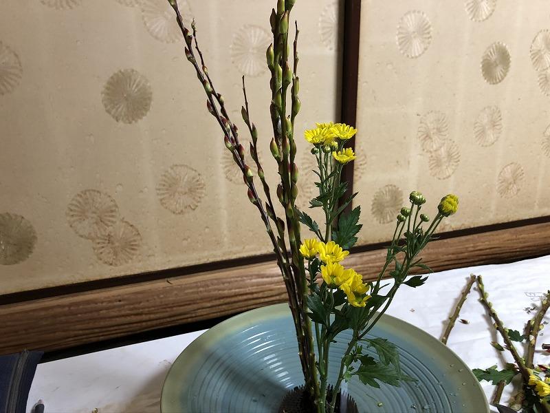 目黒教室の先生の直しがはいった池坊の2種生けの小菊
