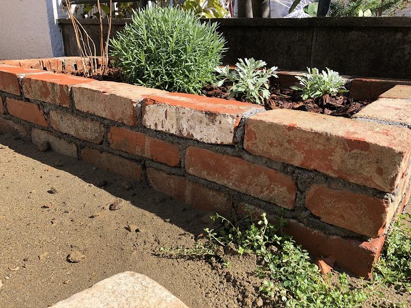 アンティークの赤レンガを花壇に使用しラベンダーグロッソとモクビシャンで上品に施工
