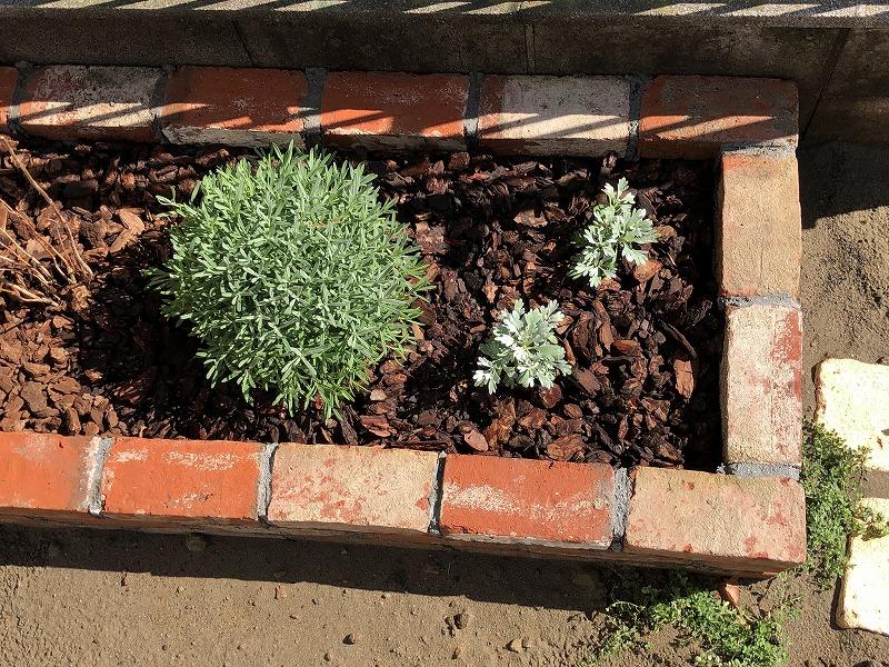 四角に作られたアンティークレンガの花壇