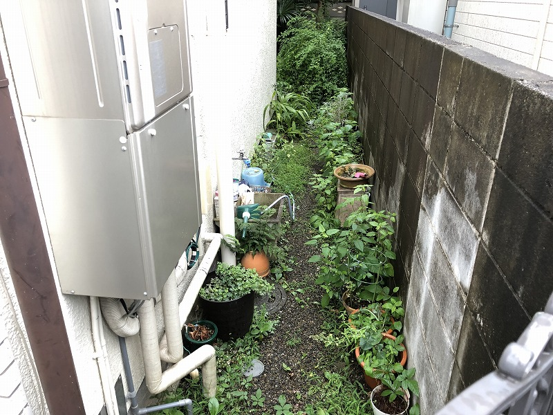 国分寺市の個人邸のお庭への通り道