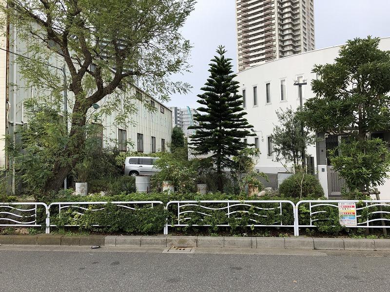 台風の影響で被害を受けた江東区の企業の花壇