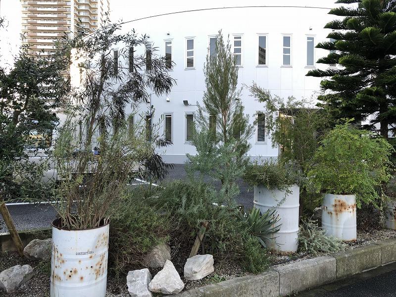 江東区の企業の花壇の植栽アフター