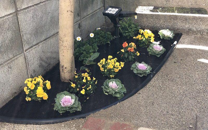 国分寺市で施工が完工した庭づくりの花のプレゼント