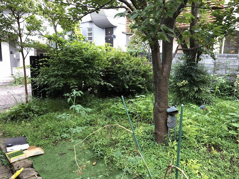 雑草と緑でいっぱになって目黒区の庭